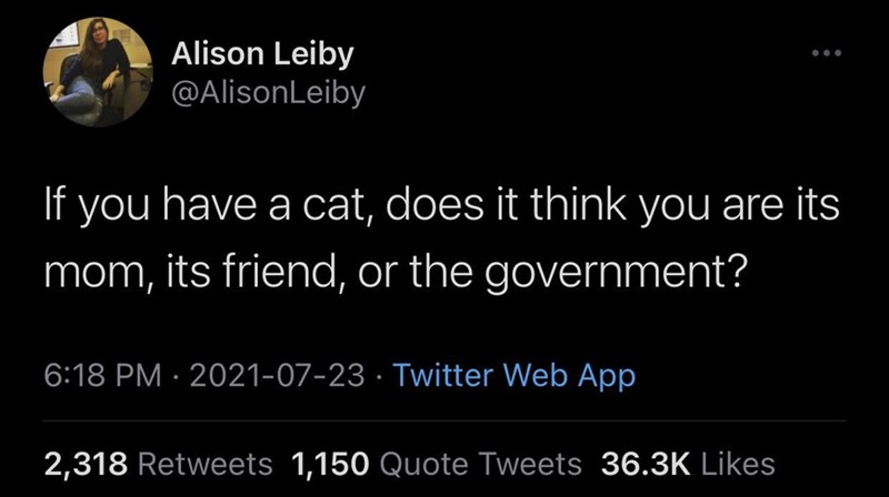 Organism - Alison Leiby @AlisonLeiby If you have a cat, does it think you are its mom, its friend, or the government? 6:18 PM · 2021-07-23 · Twitter Web App 2,318 Retweets 1,150 Quote Tweets 36.3K Likes