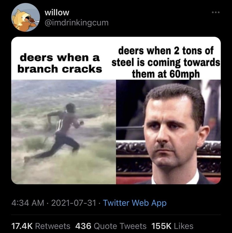 Photograph - willow @imdrinkingcum deers when 2 tons of deers when a steel is coming towards branch cracks them at 60mph 4:34 AM · 2021-07-31 · Twitter Web App 17.4K Retweets 436 Quote Tweets 155K Likes