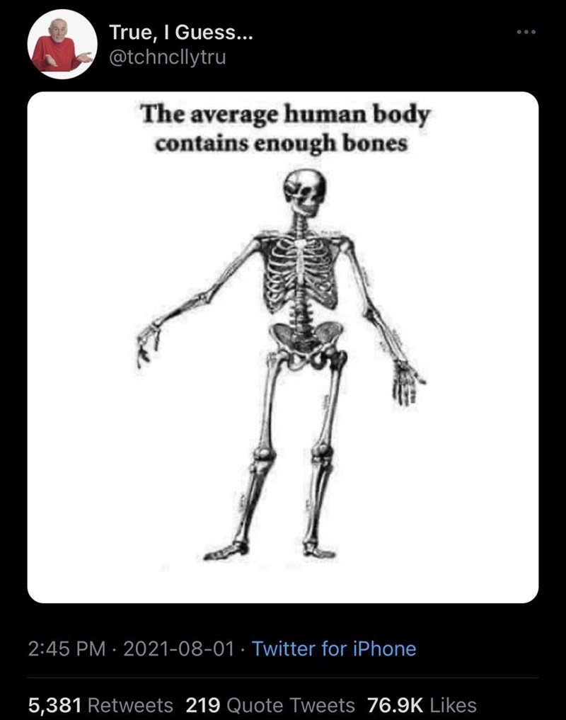 Leg - True, I Guess... @tchncllytru The average human body contains enough bones 2:45 PM · 2021-08-01 · Twitter for iPhone 5,381 Retweets 219 Quote Tweets 76.9K Likes