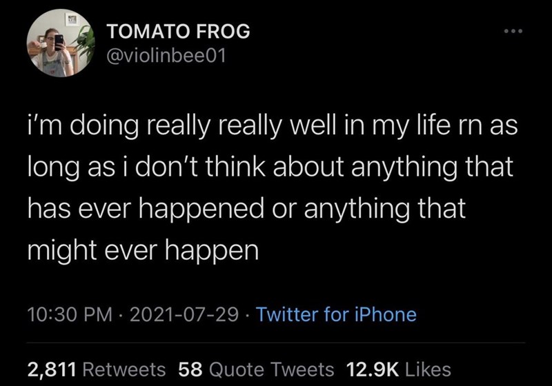 Font - TOMATO FROG @violinbee01 i'm doing really really well in my life rn as long as i don't think about anything that has ever happened or anything that might ever happen 10:30 PM · 2021-07-29 · Twitter for iPhone 2,811 Retweets 58 Quote Tweets 12.9K Likes