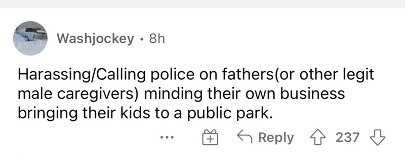 Rectangle - Washjockey · 8h Harassing/Calling police on fathers(or other legit male caregivers) minding their own business bringing their kids to a public park. G Reply 1 237 3 ...