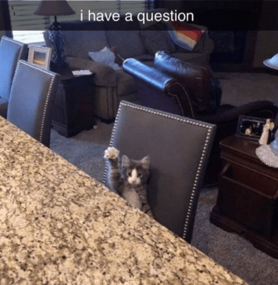 Couch - i have a question