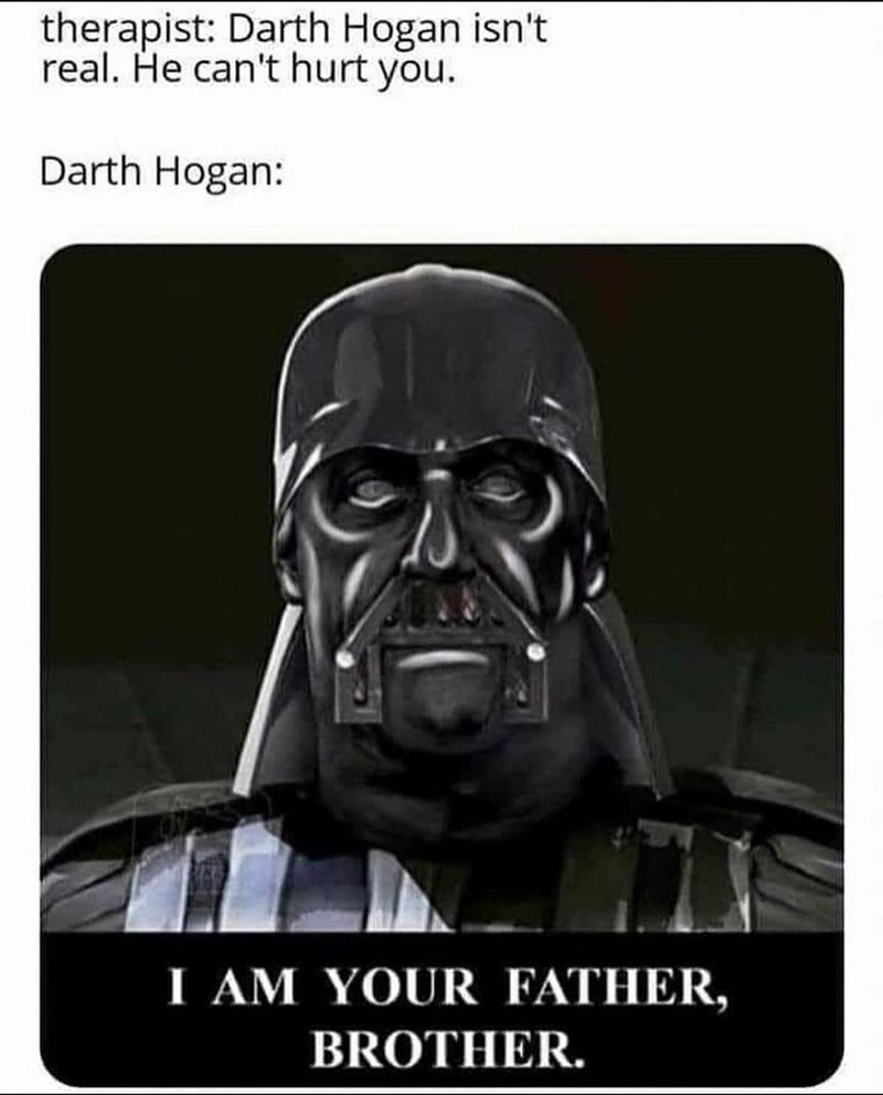 Product - therapist: Darth Hogan isn't real. He can't hurt you. Darth Hogan: I AM YOUR FATHER, BROTHER.