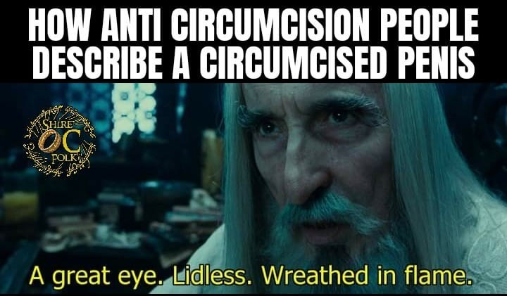 Beard - HOW ANTI CIRCUMCISION PEOPLE DESCRIBE A CIRCUMCISED PENIS SHIRE OC FOLK A great eye. Lidless. Wreathed in flame.