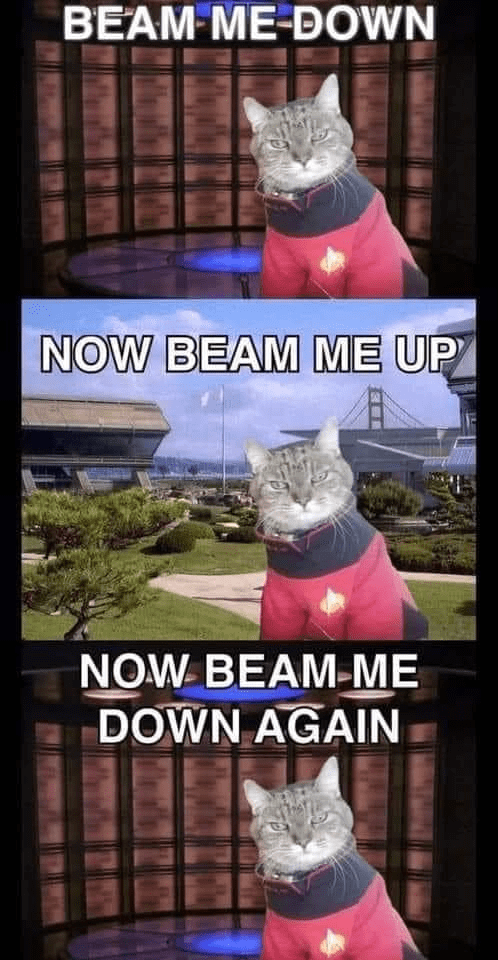 Cat - BEAM ME-DOWN NOW BEAM ME UP NOW BEAM-ME DOWN AGAIN