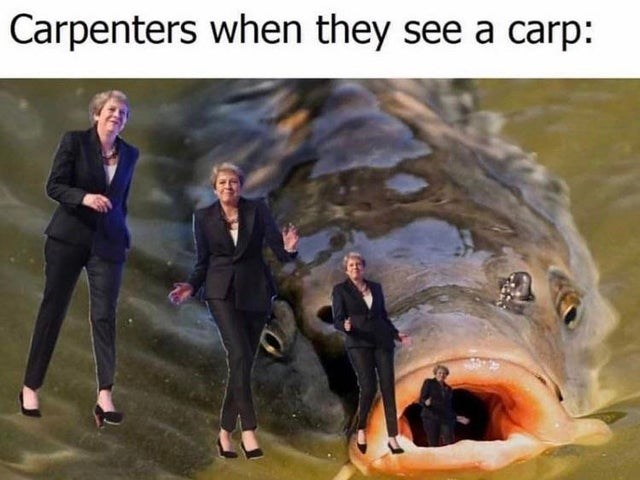 Product - Carpenters when they see a carp: