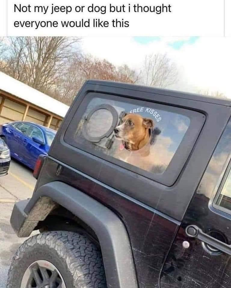 Wheel - or dog but i thought Not my jeep everyone would like this KISSES CREE
