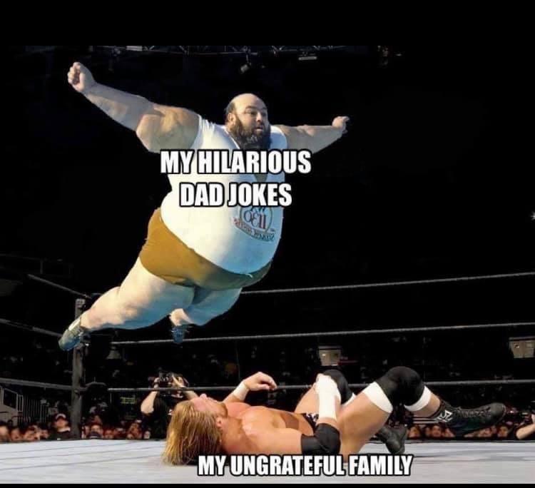Shorts - MY HILARIOUS DAD JOKES MY UNGRATEFUL FAMILY