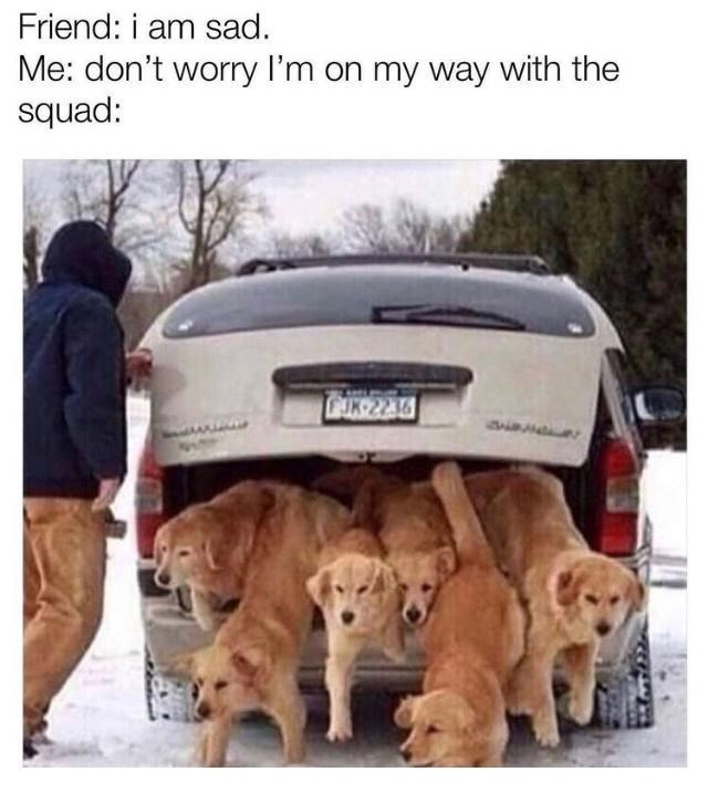 Car - Friend: i am sad. Me: don't worry I'm on my way with the squad: CUK 2236