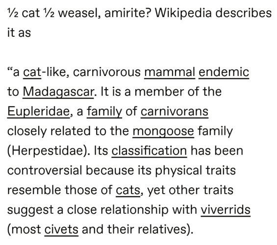 """Font - 2 cat 2 weasel, amirite? Wikipedia describes it as """"a cat-like, carnivorous mammal endemic to Madagascar. It is a member of the Eupleridae, a family of carnivorans closely related to the mongoose family (Herpestidae). Its classification has been controversial because its physical traits resemble those of cats, yet other traits suggest a close relationship with viverrids (most civets and their relatives)."""