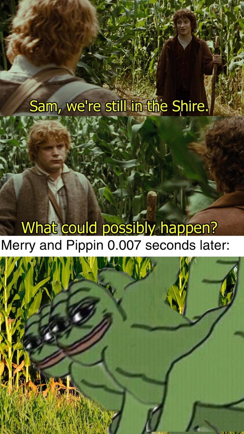 Photograph - Sam, we're still-in the Shire. What could possibly happen? Merry and Pippin 0.007 seconds later: 60VN