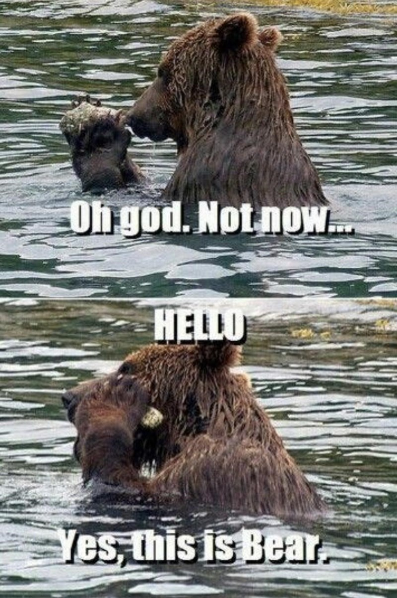 Water - Oh god. Not noW. HELLO Yes, this is Bear