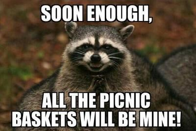Vertebrate - SOON ENOUGH, ALL THE PICNIC BASKETS WILL BE MINE!
