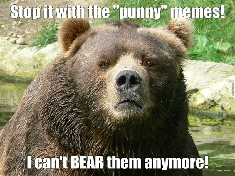 """Plant - Stop it with the """"punny"""" memes! I can't BEAR them anymore!"""