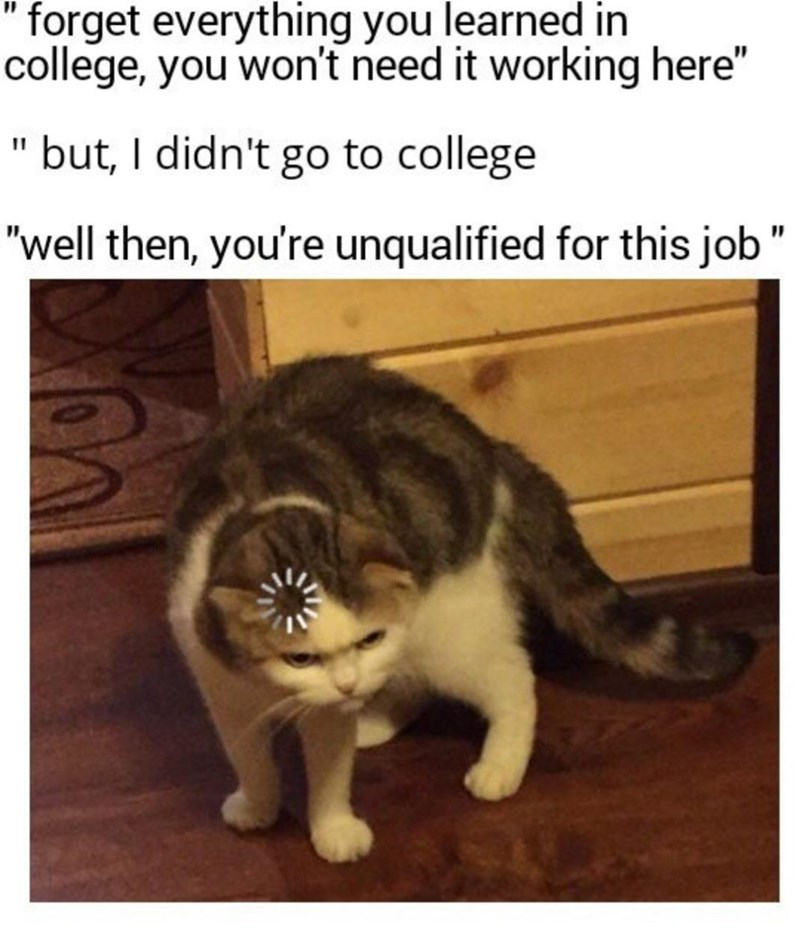 """Cat - """" forget everything you learned in college, you won't need it working here"""" but, I didn't go to college """"well then, you're unqualified for this job"""""""