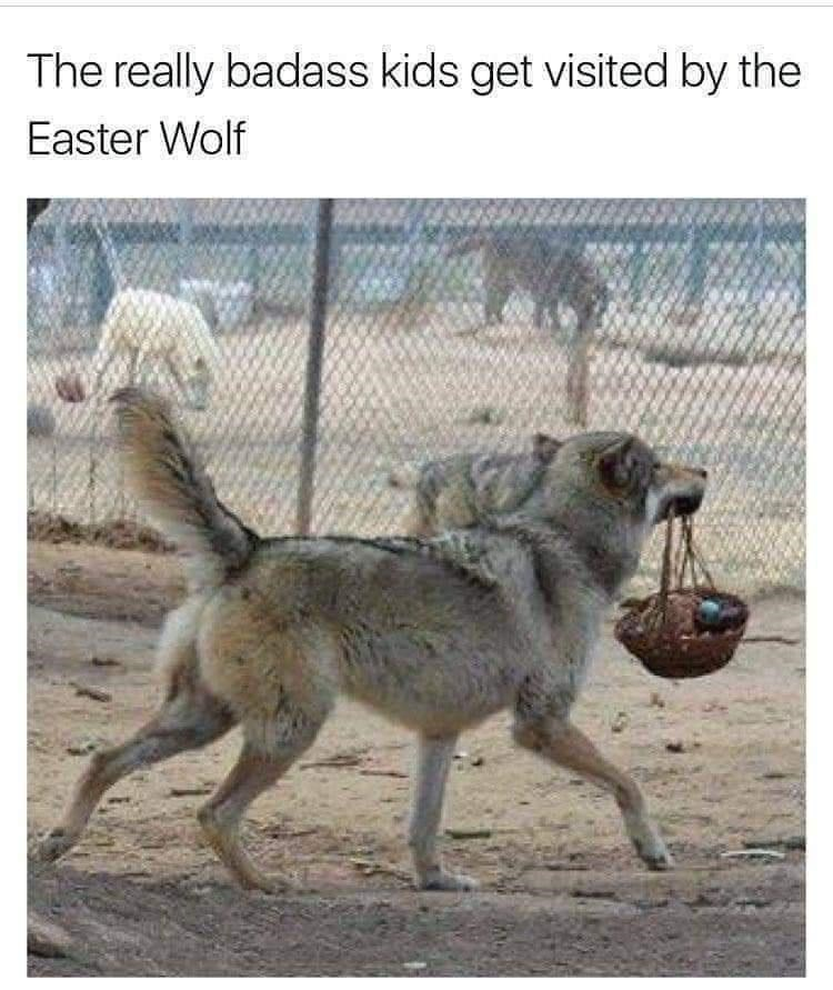 Photograph - The really badass kids get visited by the Easter Wolf