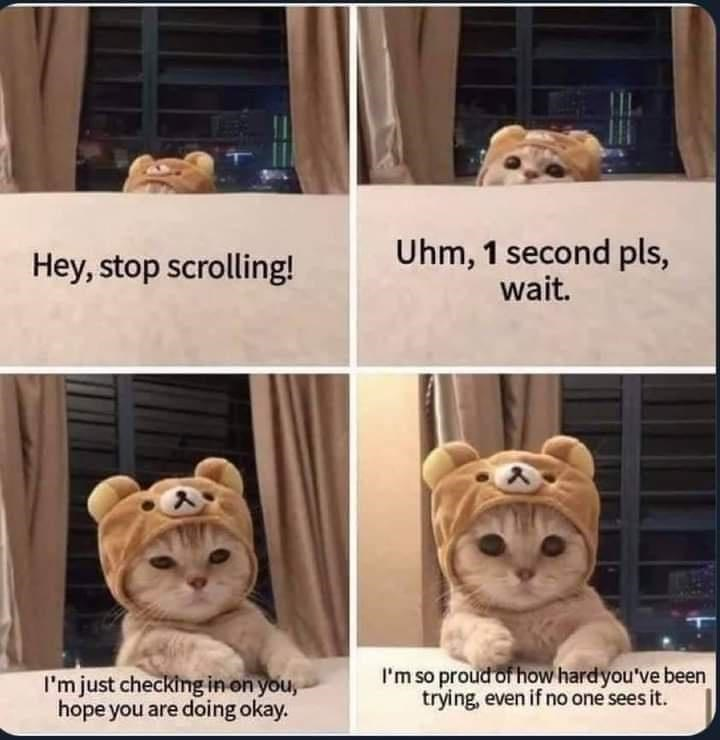 Brown - Hey, stop scrolling! Uhm, 1 second pls, wait. I'm just checking in on you, hope you are doing okay. I'm so proud of how hardyou've been trying, even if no one sees it.