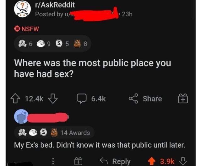 Font - r/AskReddit Posted by u/ 23h NSFW 6 e 9 9 5 8 Where was the most public place you have had sex? 12.4k 6.4k * Share 14 Awards My Ex's bed. Didn't know it was that public until later. 6 Reply 3.9k