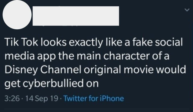 Font - Tik Tok looks exactly like a fake social media app the main character of a Disney Channel original movie would get cyberbullied on 3:26 14 Sep 19 · Twitter for iPhone