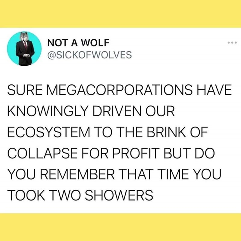 Yellow - NOT A WOLF @SICKOFWOLVES SURE MEGACORPORATIONS HAVE KNOWINGLY DRIVEN OUR ECOSYSTEM TO THE BRINK OF COLLAPSE FOR PROFIT BUT DO YOU REMEMBER THAT TIME YOU TOOK TWO SHOWERS