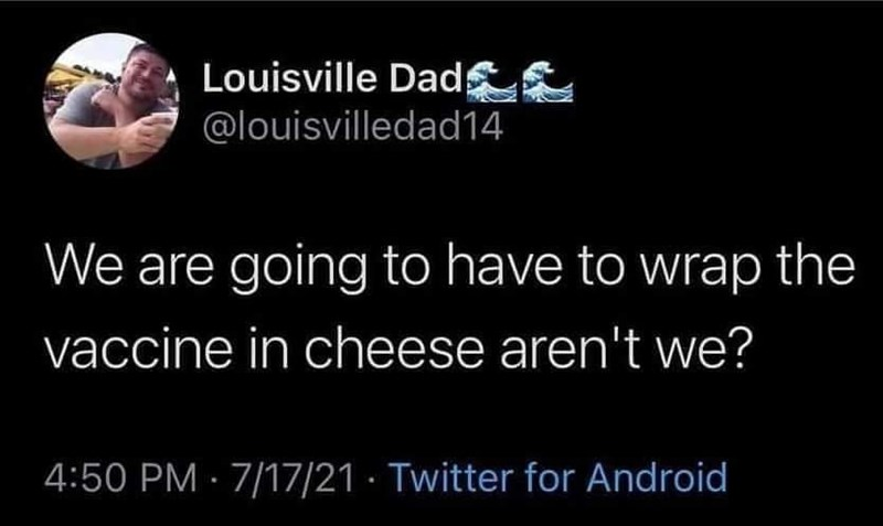 Gesture - Louisville Dad ££ @louisvilledad14 We are going to have to wrap the vaccine in cheese aren't we? 4:50 PM · 7/17/21 · Twitter for Android
