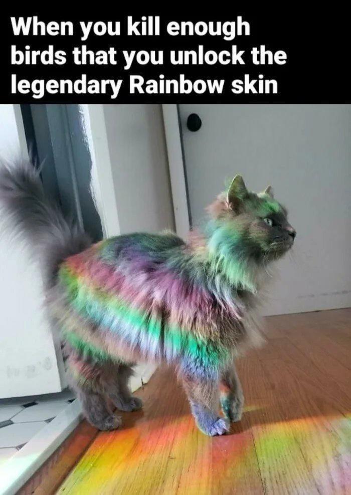 Cat - When you kill enough birds that you unlock the legendary Rainbow skin