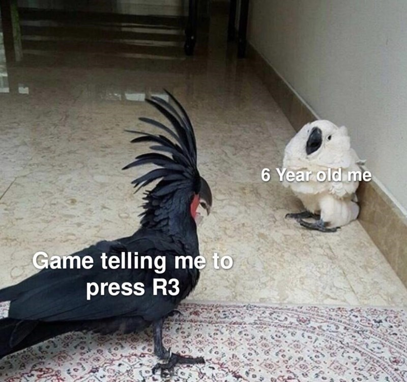 Bird - 6 Year old mne Game telling me to press R3