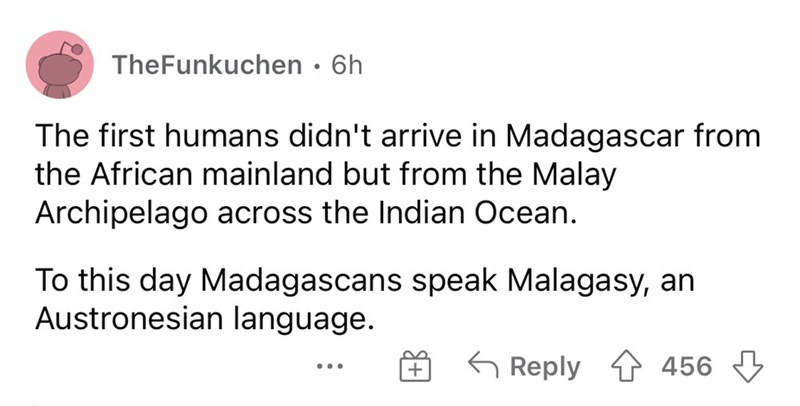 Font - TheFunkuchen • 6h The first humans didn't arrive in Madagascar from the African mainland but from the Malay Archipelago across the Indian Ocean. To this day Madagascans speak Malagasy, an Austronesian language. 6 Reply 1 456 3 ...