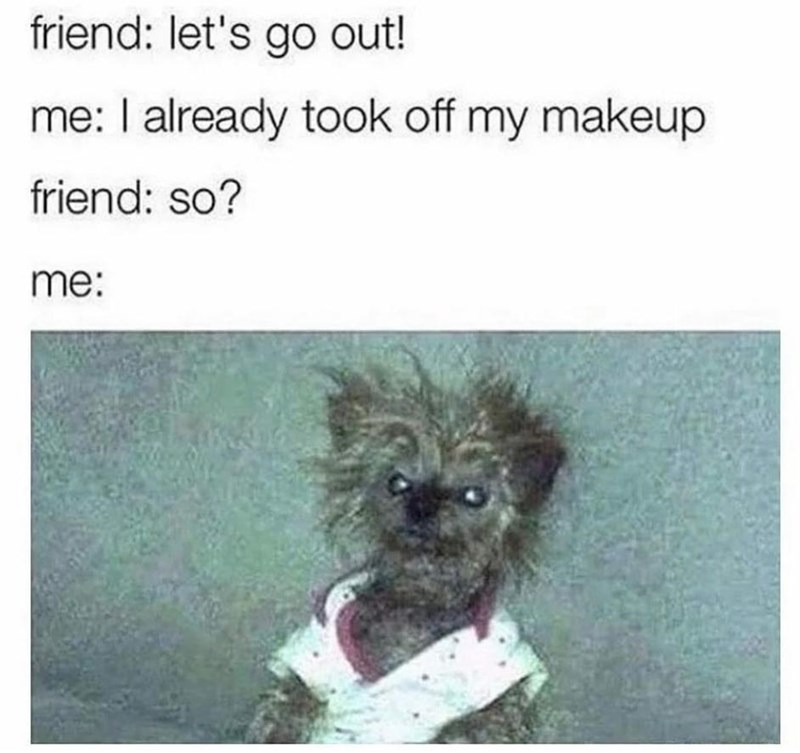 Dog - friend: let's go out! me: I already took off my makeup friend: so? me: