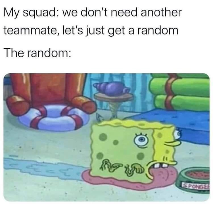 Vertebrate - My squad: we don't need another teammate, let's just get a random The random: SPONGE