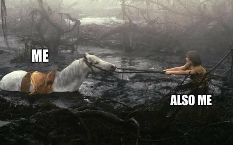 Horse - ME ALSO ME