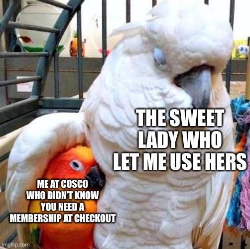Bird - THE SWEET LADY WHO LET ME USE HERS ME AT COSCO WHO DIDNT KNOW YOU NEED A MEMBERSHIP AT CHECKOUT imgfip.com