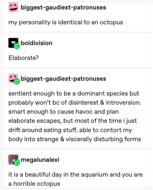 Font - biggest-gaudiest-patronuses my personality is identical to an octopus boidivision Elaborate? biggest-gaudiest-patronuses sentient enough to be a dominant species but probably won't bc of disinterest & introversion. smart enough to cause havoc and plan elaborate escapes, but most of the time i just drift around eating stuff. able to contort my body into strange & viscerally disturbing forms megalunalexi it is a beautiful day in the aquarium and you are a horrible octopus