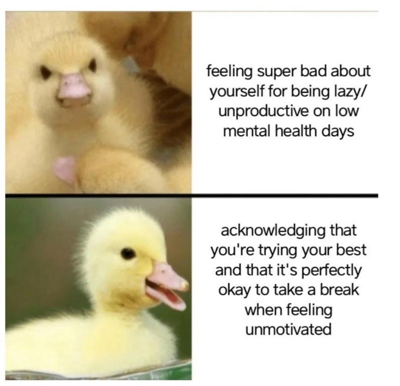 Bird - feeling super bad about yourself for being lazy/ unproductive on low mental health days acknowledging that you're trying your best and that it's perfectly okay to take a break when feeling unmotivated