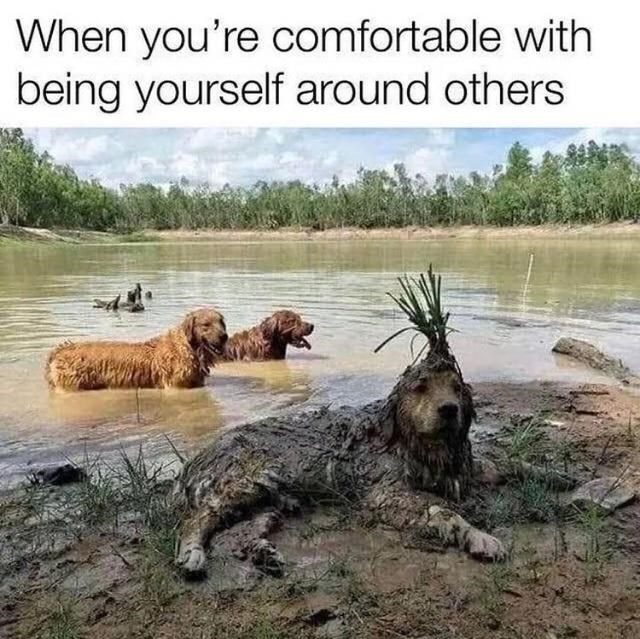 Water - When you're comfortable with being yourself around others