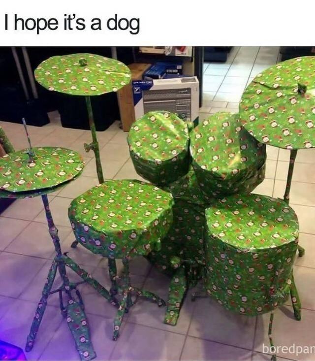 Plant - I hope it's a dog boredpan