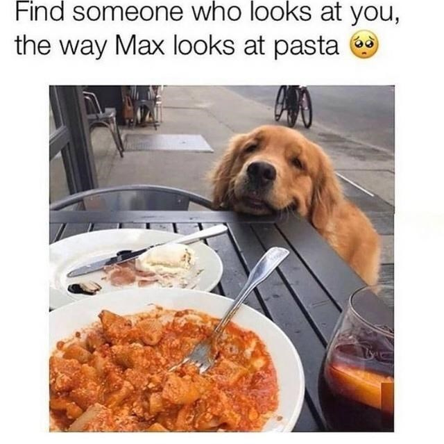 Food - Find someone who looks at you, the way Max looks at pasta a