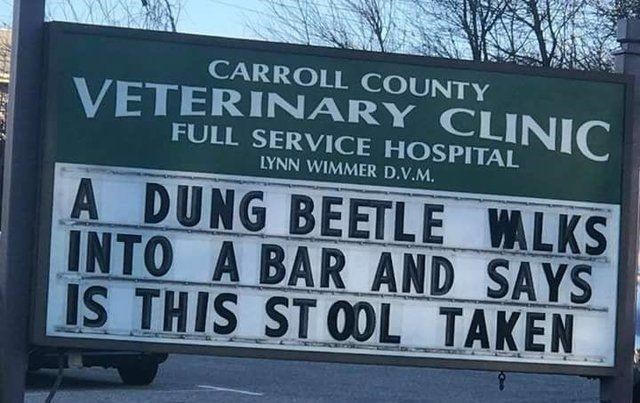 Motor vehicle - CARROLL COUNTY VETERINARY CLINIC FULL SERVICE HOSPITAL LYNN WIMMER D.V.M. A DUNG BEETLE WALKS INTO A BAR AND SAYS IS THIS ST OOL TAKEN