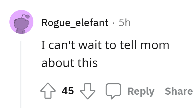 Font - Rogue_elefant · 5h I can't wait to tell mom about this 45 Reply Share