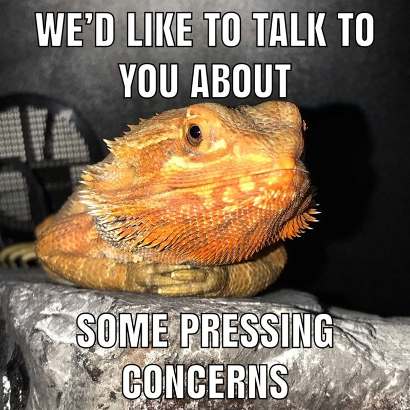 Organism - WE'D LIKE TO TALK TO YOU ABOUT SOME PRESSING CONCERNS