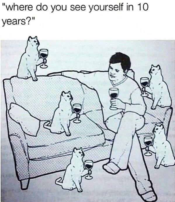 """Dog - """"where do you see yourself in 10 years?"""""""