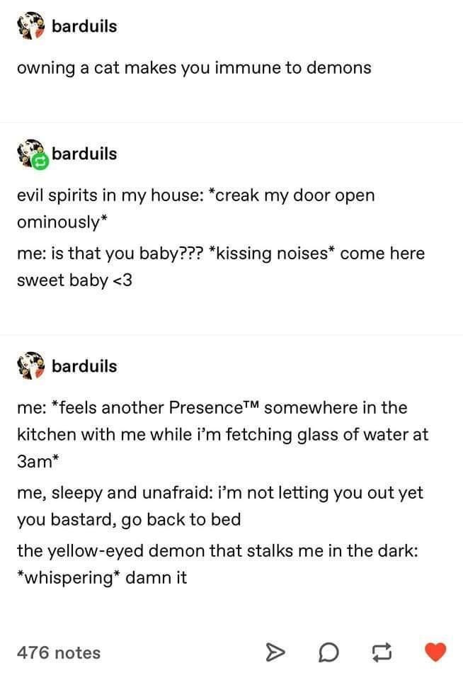 Font - barduils owning a cat makes you immune to demons barduils evil spirits in my house: *creak my door open ominously* me: is that you baby??? *kissing noises* come here sweet baby <3 barduils me: *feels another PresenceTM somewhere in the kitchen with me while i'm fetching glass of water at 3am* me, sleepy and unafraid: i'm not letting you out yet you bastard, go back to bed the yellow-eyed demon that stalks me in the dark: *whispering* damn it 476 notes A