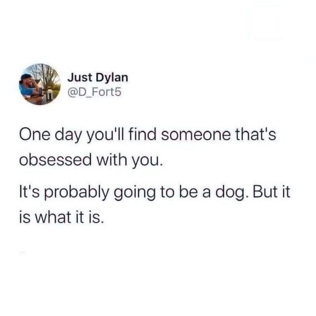 Font - Just Dylan @D_Fort5 One day you'll find someone that's obsessed with you. It's probably going to be a dog. But it is what it is.