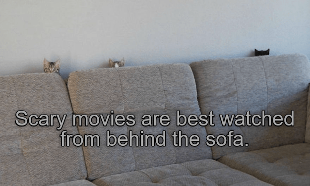 Couch - Scary moviesS are best watched from behind the sofa.