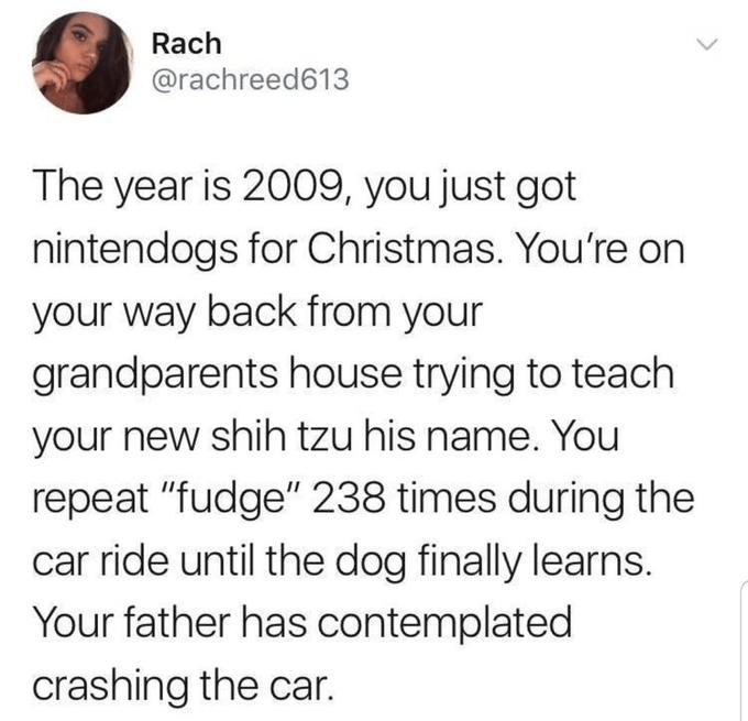 """Organism - Rach @rachreed613 The year is 2009, you just got nintendogs for Christmas. You're on your way back from your grandparents house trying to teach your new shih tzu his name. You repeat """"fudge"""" 238 times during the car ride until the dog finally learns. Your father has contemplated crashing the car."""