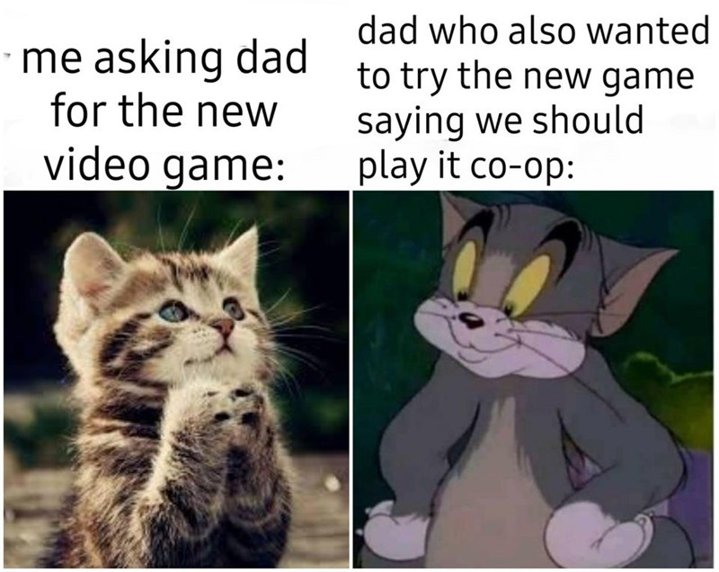 Cat - me asking dad for the new video game: dad who also wanted to try the new game saying we should play it co-op: