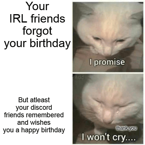 Hair - Your IRL friends forgot your birthday O promise Add But atleast your discord friends remembered and wishes thank you you a happy birthday I won't cry....