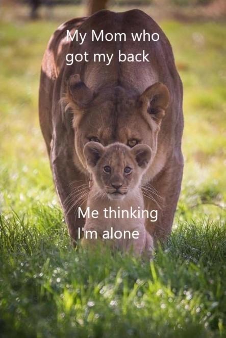 Plant - My Mom who got my back Me thinking I'm alone