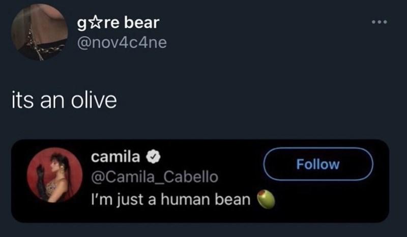 Font - g*re bear @nov4c4ne its an olive camila Follow @Camila_Cabello I'm just a human bean