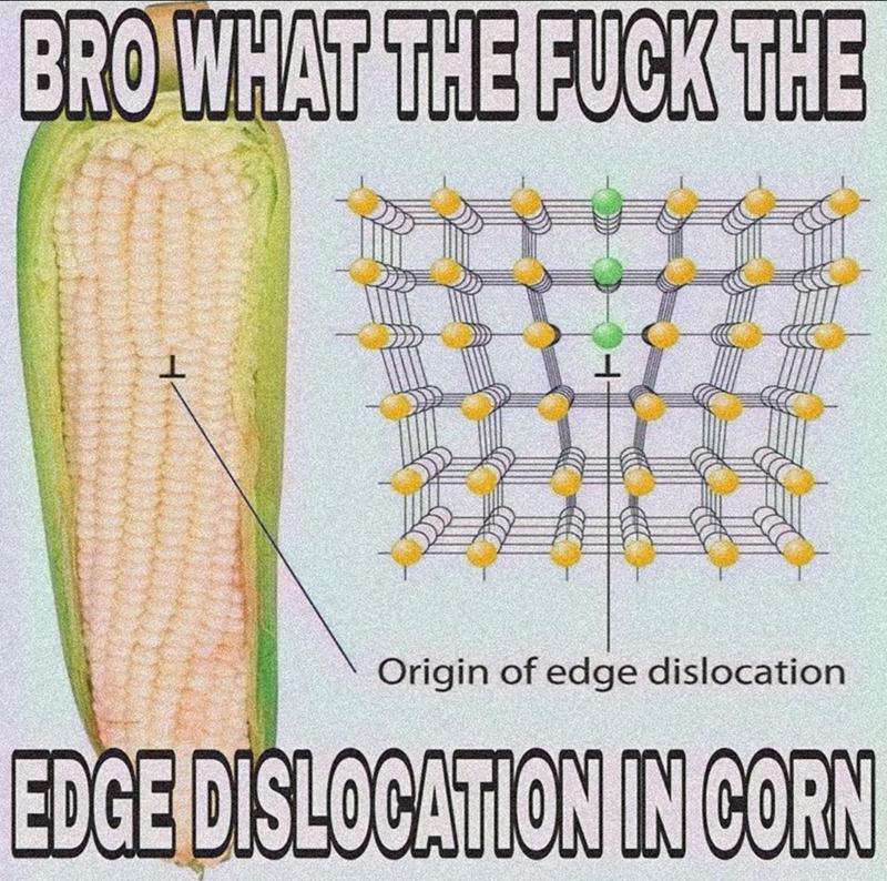 Organism - BRO WHAT THE FUCK THE Origin of edge dislocation EDGE DISLOCATION IN CORN